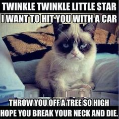 Grumpy cat - Twinkle twinkle little star I want to hit you with a car..