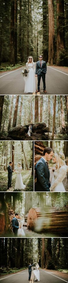 Redwood National Park, CA | Image by Catherine Coons Photography