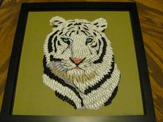 quilled Tiger