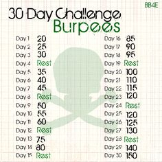 Burpee challenge. in the middle of the 30 day ab challenge, going to do this next with my work out routine :-s