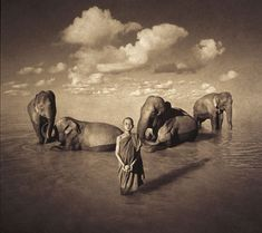 Every one of Gregory Colbert's photographs captures a moment that happened. The cynical eye is trained to assume trickery in images such as these, is resistant to the idea that they could represent the actual and the possible, but these images owe nothing to Photoshop, photo manipulation, montage, artificial lighting, or special effects.
