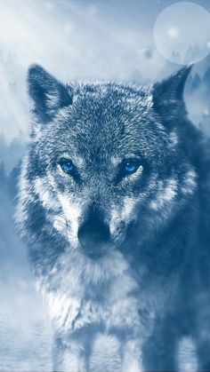 Find the best Wolf Wallpaper for iPhone on GetWallpapers. We have background pictures for you! Wallpaper Earth, Wolf Wallpaper, Animal Wallpaper, Nature Wallpaper, Iphone Wallpaper, Predator, Wolf Canvas, Wolf Artwork, Wolf Painting