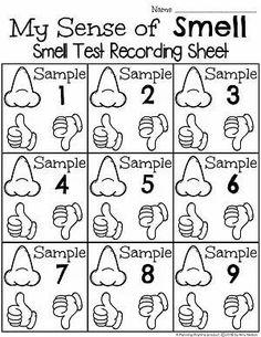 Sense of Smell Worksheets