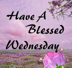 Have a blessed Wednesday quotes quote days of the week wednesday hump day wednesday quotes hump day quotes Wednesday Greetings, Wednesday Hump Day, Blessed Wednesday, Happy Wednesday Quotes, Wonderful Wednesday, Have A Blessed Day, Morning Blessings, Morning Prayers, Good Morning Wishes