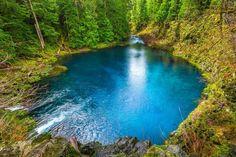 I so want to jump in here right now...July in Oregon! Tamolitch Blue Pool, McKenzie Trail, Oregon ♥