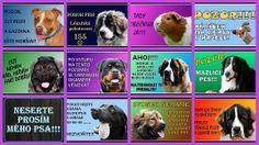 Výstražné tabulky s Vaším zvířátkem :-)