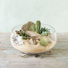 """Resting on a trio of glass feet, this shallow bowl terrarium makes an open air display for planted specimens.- Glass- Indoor use only- Imported5.25""""H, 3.75""""D, 9.75"""" diameter"""