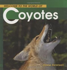 Welcome to the World of Coyotes (Welcome to the World Series) by Diane Swanson 9781552852583 Used Books, Great Books, American History, American Girl, Native American, Popular Series, Animal Books, Wild Dogs, Classic Literature