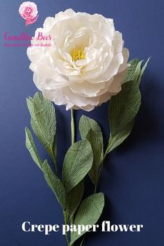 Crepe paper flower, How to make paper Peony flower from crepe paper - Inter 1 Crepe Paper Flowers Tutorial, Paper Flowers Craft, How To Make Paper Flowers, Giant Paper Flowers, Flower Crafts, Paper Flower Wreaths, Yarn Flowers, Paper Peonies, Paper Roses