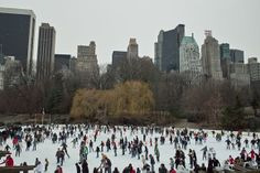 new-york-wollman-ice-skating-rink-central-park-free-stock-photo