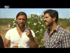 Rotas do Vinho | Ep. Vinhos do Alentejo