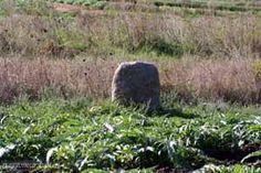 Santa Maria Coghinas - menhir La Pietra della Signora