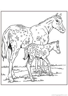 Horse Coloring Pages 65