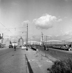 Rotterdam: De Maasboulevard 1953