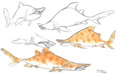 Sand Tiger Shark by ~Polarkeet on deviantART ★ || CHARACTER DESIGN REFERENCES…