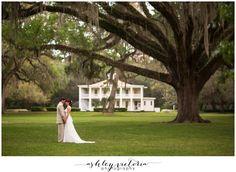 Eden Gardens Wedding | 30A Santa Rosa San Destin FL | Old South Plantation Live Oaks Bride & Groom Portrait | View more: http://www.ashleyvictoriaphotographyblog.com/2013/05/07/eden-gardens-state-park-wedding-photography-pam-bill-are-married/