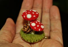 Tiny little mushroom arrangement... by woolly  fabulous, via Flickr