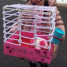 Guinea pig valentine's day box {Rorie's 1st box}