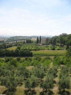 Beautiful lush countryside.