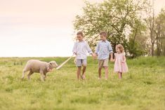 Farm Fresh Dream Session featuring a picnic as a family (and of course with some baby animals) on a local farm!