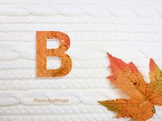 Uppercase letter B with glitter leaf and sweater knit. #fall #autumn #alphabet #typography #initial #monogram #font   maple leaf