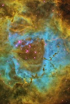 Space - Community - #ROSETTENEBULA