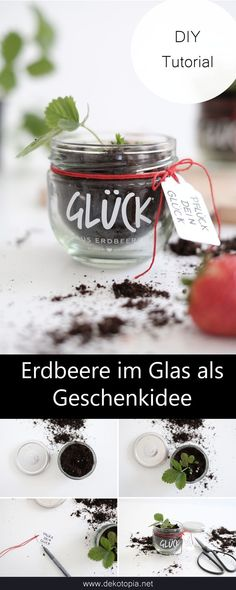 Pick your luck - strawberry patch for Mother& Day- Pflück Dein Glück – Erdbeerpflänzlein zum Muttertag Sweet idea for Mother& Day: jam jar with strawberry plant. Something different than flowers :] it Yourself Day - Birthday Cards For Friends, Funny Birthday Cards, Birthday Gifts, Diy Birthday, Strawberry Patch, Strawberry Plants, Best Friend Cards, Diy Gifts For Girlfriend, Balloons And More