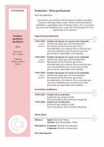 Plantilla de Currículum Vitae Cronológico - Modelo 3