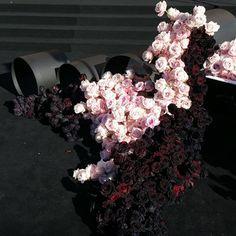 The LANE List: Sydney Wedding Florists / Seed Flora
