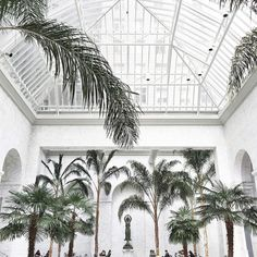 FOR THE HONEYMOON || Palm trees & white conservatory | Travel inspiration || NOVELA BRIDE...where the modern romantics play & plan the most stylish weddings...www.novelabride.com @novelabride #jointheclique