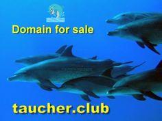 Domain zu verkaufen taucher.club #taucherclub #tauchclub #taucher #scuba #diving #subadiving Movie Posters, Movies, Scubas, Films, Film Poster, Film Books, Film Posters, Movie Theater, Billboard