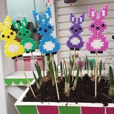 Easter bunnies hama perler beads by panduro.hobby