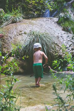 Jungle - null