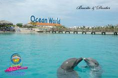 Ocean World Adventure Park Puerto Plata