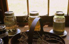Kräuter in Essig einlegen – Kräuteressig selber machen