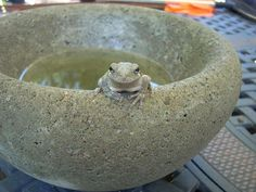 The Homestead Survival: Easy To Make Concrete Bowls and Planters DIY Project