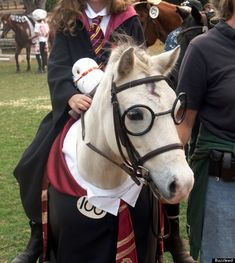 @Kate Sulick I know about your obsession with the Potter, and this made me think of you and the pony from when you came to visit. #halloweencostume?