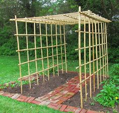 My bamboo vegetable trellis arbor (6 x 8 feet)