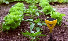 This agricultural technology startup has been doing some growing of its own.