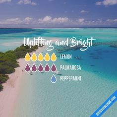 Uplifting and Bright Essential Oil Diffuser Blend - Essential Oil Diffuser - Ideas of Essential Oil Diffuser Palmarosa Essential Oil, Essential Oil Scents, Essential Oil Perfume, Essential Oil Diffuser Blends, Essential Oil Uses, Doterra Essential Oils, Young Living Essential Oils, Thing 1, Aromatherapy Oils
