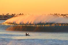 Golden Southern California Photo: Kipp