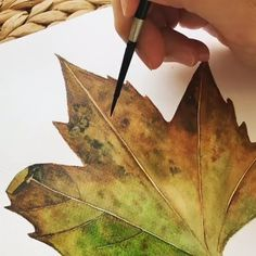 Watercolor Paintings Nature, Watercolor Video, Watercolor Painting Techniques, Watercolor Leaves, Watercolour Tutorials, Watercolor Drawing, Painting On Leaves, Leaf Paintings, Autumn Painting