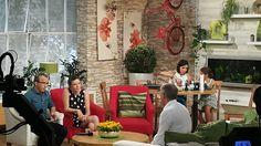 Dr. Major Tamás szakértőként a Duna Tv műsorában.