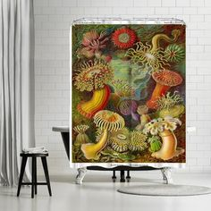 East Urban Home Adams Ale Haekcel Plate Shower Curtain New Bathroom Ideas, Bathroom Sets, Wooden Terrace, Big Bathrooms, Shower Curtain Rods, Curtains For Sale, Green Pattern, State Art, Home And Garden