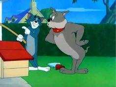Tom and Jerry Cartoon | eVZmMEp0czBvb2cx_o_tom-and-jerry-cartoon-the-dog-house.jpg