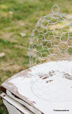 DIY make your own Chicken Wire Cloche to protect tender veggies from varmints.