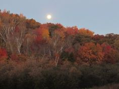 http://www.travelwisconsin.com/upload/images/fallreport/userphotos/bd/bd2575b7-761f-47f3-8450-56ad1f093988moon-over-hill.JPG