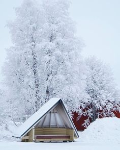 Snow #Redhotchilipeppers  Location  #Rovaniemi  Photo  #ElectraAsteri