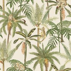 This tropical nature inspired wallpaper features a pattern of botanical palm trees adorned with cute little squirrel monkeys climbing throughout. The painted canvas look gives a slightly vintage vibe, making this a fun, yet elegant contemporary style Wildlife Wallpaper, Monkey Wallpaper, Tree Wallpaper, Animal Wallpaper, Wallpaper Roll, Pattern Wallpaper, Wallpaper Ideas, Iphone Wallpaper, Paintable Wallpaper
