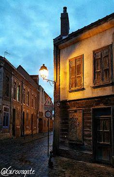Cosa vedere ad Amiens, la città della cattedrale, di Saint-Leu e di Verne! Saint Leu, Mansions, House Styles, Home Decor, Decoration Home, Manor Houses, Room Decor, Villas, Mansion
